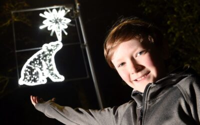 Aviemore Primary School Winter Light Design 2020